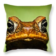 Unwanted Intruder Throw Pillow by Joerg Lingnau