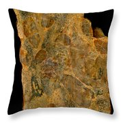 Uranium Ore Conglomerate Throw Pillow by Ted Kinsman