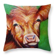 Van Throw Pillow by Shannon Grissom