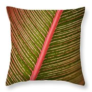 Variegated Ti-leaf 2 Throw Pillow by Ron Dahlquist - Printscapes