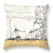 Vintage Farm 2 Throw Pillow by Debbie DeWitt
