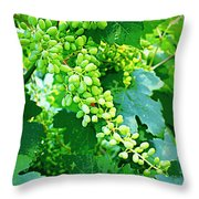 Vintage Vines  Throw Pillow by Carol Groenen