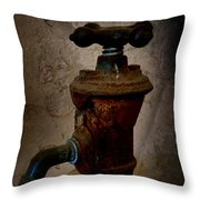 Vintage Water Faucet Throw Pillow by Heinz G Mielke