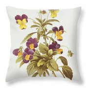 Viola Tricolour Throw Pillow by Pierre Joseph Redoute