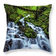 Wahkeena Throw Pillow by Chad Dutson