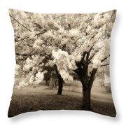 Waiting For Sunday - Holmdel Park Throw Pillow by Angie Tirado-McKenzie