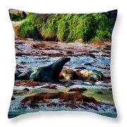 Warm And Fuzzy  Throw Pillow by Douglas Barnard