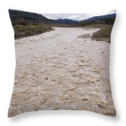 Water Flowing After Record-setting Throw Pillow by Rich Reid