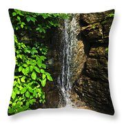 Waterfall In Forest Throw Pillow by Elena Elisseeva