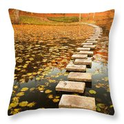 Way In The Lake Throw Pillow by Evgeni Dinev