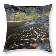 West Fork Oak Creek And Fall Color Throw Pillow by Rich Reid
