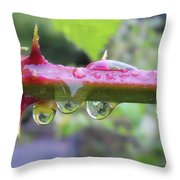 Wet Prick Throw Pillow by Donna Blackhall