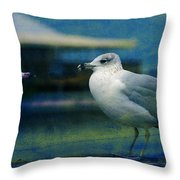 What's Up Bro' Throw Pillow by Susanne Van Hulst