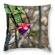 Wheel And Fushia Blossom Throw Pillow by Douglas Barnett
