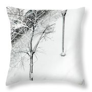 When Nature Quiets The City Throw Pillow by Dana DiPasquale