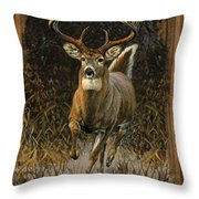 Whitetail Deer Throw Pillow by JQ Licensing