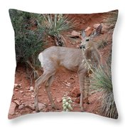 Wild And Pretty - Garden Of The Gods Colorado Springs Throw Pillow by Christine Till