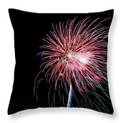 Wild Sky Flower Throw Pillow by Phill Doherty