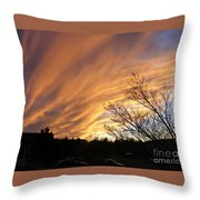 Wild Sky Of Autumn Throw Pillow by Barbara Griffin