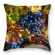 Wine Grapes Napa Valley Throw Pillow by Garry Gay