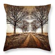 winter avenue Throw Pillow by Meirion Matthias