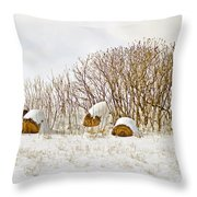 Winter Beauty Throw Pillow by Deborah Benoit