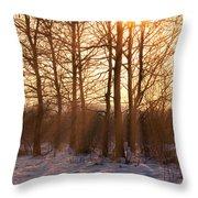 Winter Break Throw Pillow by Wim Lanclus