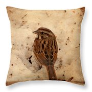 Winter Feast I - Textured Throw Pillow by Angie Tirado
