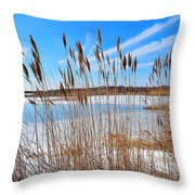Winter In The Salt Marsh Throw Pillow by Catherine Reusch  Daley