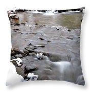 Winter Monongahela National Forest Throw Pillow by Thomas R Fletcher