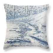 Winter River II Throw Pillow by Todd A Blanchard