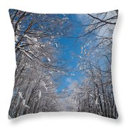 Winter Road Throw Pillow by Evgeni Dinev