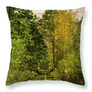 Wooded Path Throw Pillow by Claude Monet
