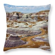 Yea Though I Walk Throw Pillow by Skip Hunt