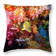 Yellow Banded Sweetlip Fish And Coral Throw Pillow by Beverly Factor