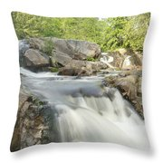 Yellow Dog Falls 4234 Throw Pillow by Michael Peychich