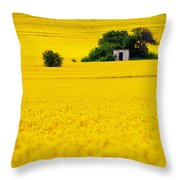 Yellow Throw Pillow by Evgeni Dinev