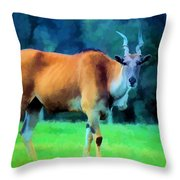 Young Eland Bull Throw Pillow by Jan Amiss Photography