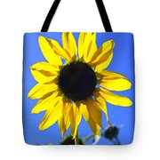072 Tote Bag by Marty Koch