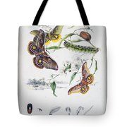 Australian Butterflies Tote Bag by Philip Ralley