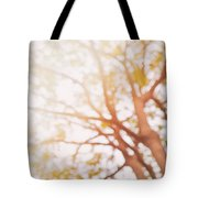 Beneath A Tree  14 5284  Diptych  Set 1 Of 2 Tote Bag by Ulrich Schade