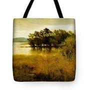 Chill October Tote Bag by John Everett Millais