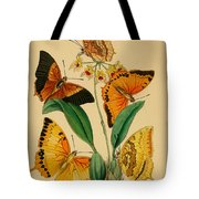 Chinese Butterflies 1847 Tote Bag by Philip Ralley