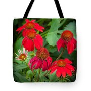 Coneflowers Echinacea Red  Tote Bag by Rich Franco