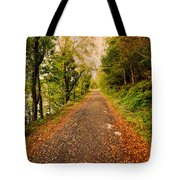 Country Lane Tote Bag by Adrian Evans