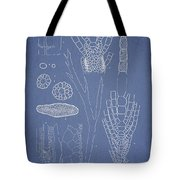 Desmarestia Ligulata Tote Bag by Aged Pixel