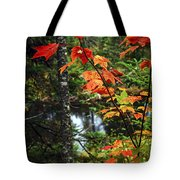 Fall Forest And River Tote Bag by Elena Elisseeva