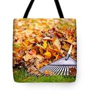 Fall Leaves With Rake Tote Bag by Elena Elisseeva