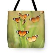 Flock Of Plain Tiger Danaus Chrysippus Tote Bag by Alon Meir
