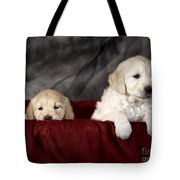 Golden Retriever Puppies Tote Bag by Angel  Tarantella
